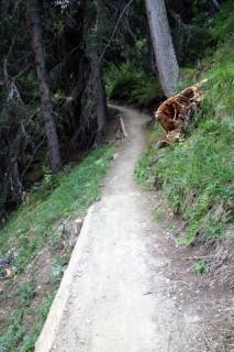 Sehr gut instandgestellter Trail ins Sertigtal