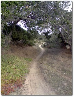 Fort Ord Trails - Anliegerloop
