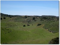 Fort Ord - Goat Trail mit Mountainbiker