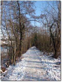 Emmentrail im Winter