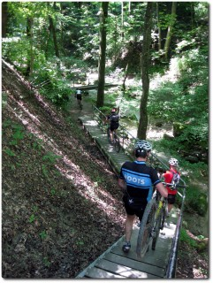 Treppen im Dorfbachtobel oberhalb Meilen