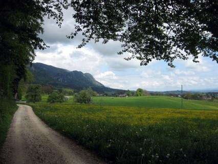 Zurück in Richtung Solothurn - es klart auf