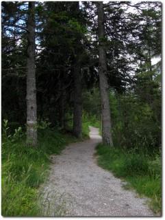 Spassiger Trail - Graubünden Bike 90