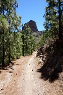 Fireroad im Tal von Ayacata