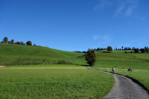 Aufstieg zur Lüderenalp - Gibel