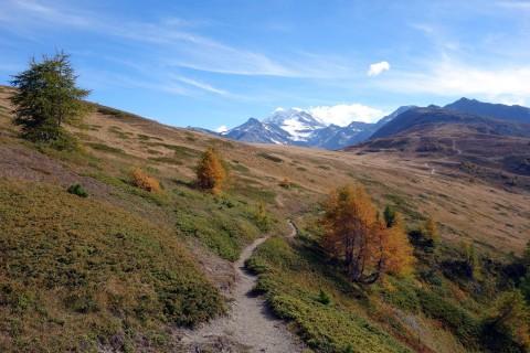 Toller Trail vom Gibidum nach Giw
