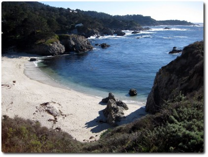 Point Lobos - Gibson Beach