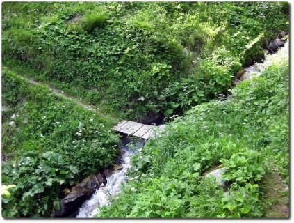 Kleiner Brücke auf dem grünen Trail