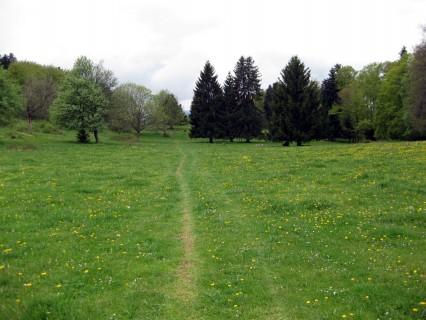 Grüne Trails 2 - Wiesen Romont
