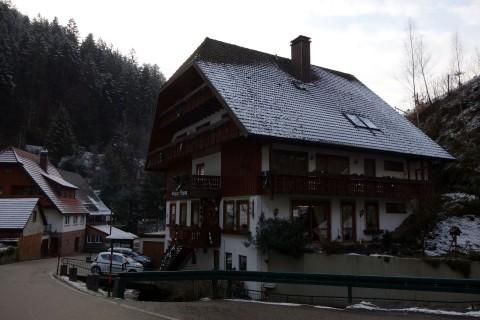 Grüner Baum Wildschapbach