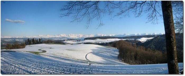 Panorama Berner Alpen - Gurten