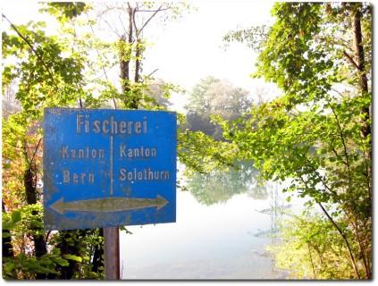 Kantonsgrenze ist auch Fischereigrenze
