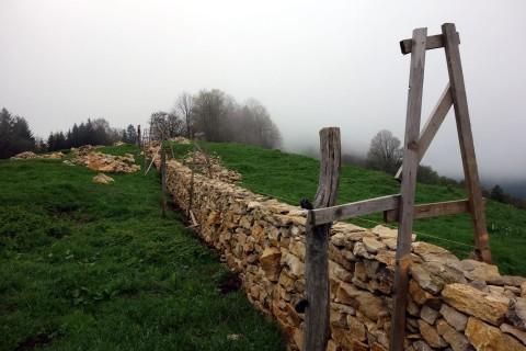 Neue Grenzmauerbaumeister auf dem Probsteberg