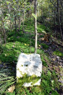 Alte Grenzmauer beim Pfaffenweiher