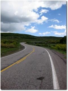 Highway 12 Birkenwald