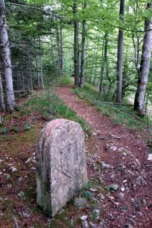 Trail bei Bergflue