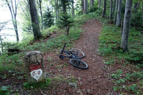Trail bei Helfenberg