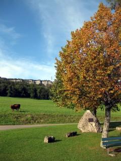 Der Herbst schleicht sich in die Landschaft
