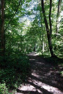 Trail entlang des rivière l'Hermance