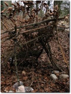 Nicht wirklich gelungene Holzhütte