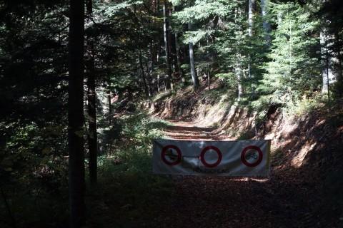 Holzschlag auf einer MUST Route