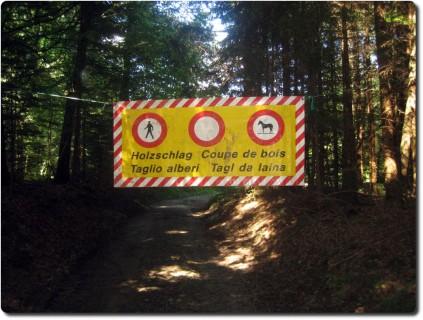 Plakat Holzschlag