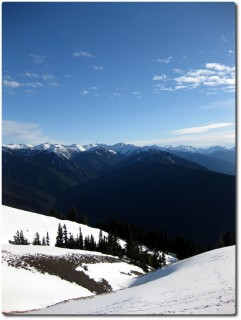 Hurricance Ridge und Olympic Mountains