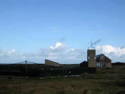 Impressionen Ile Grande - Vogelwarte