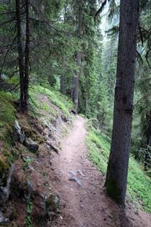 Mehr Trails dem Hang entlang