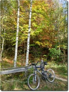 Herbstbike