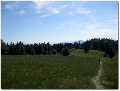Wiesentrail in Richtung Montagne de Romont