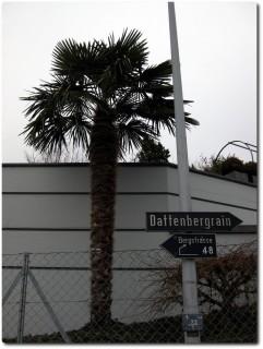 Aufstieg zum Sonneberg