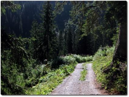...vorwiegend auf steilen und schnellen Kieswegen