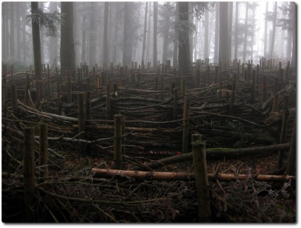 Klimaweg auf dem Sonneberg - Labyrinth