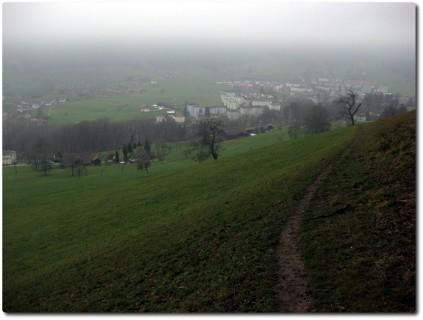Trail vom Sonneberg nach Obernau runter