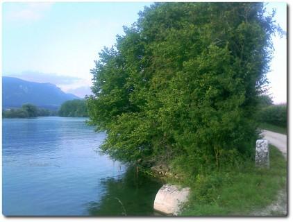 Kantonsgrenze an der Aare