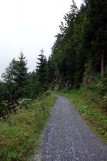 Route 245 - Auf Schotter durch den Flimser Wald