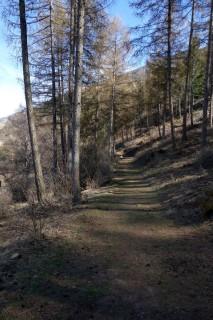 Trails bei Laas