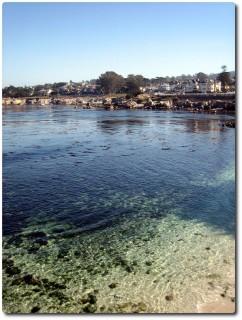 Am Ziel: Monterey Bay