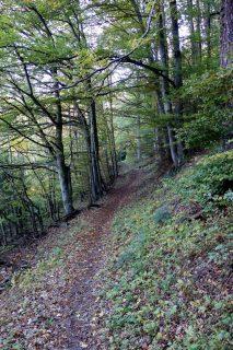 Trail bei La Sasse