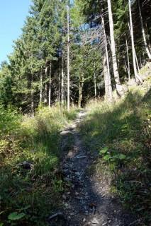 Unfahrbarer Trail im Ledigraben