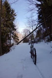 Aufstieg am südlichen Thunerseeufer
