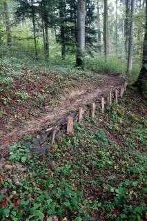 Lochgraben Trail - Verbauungen