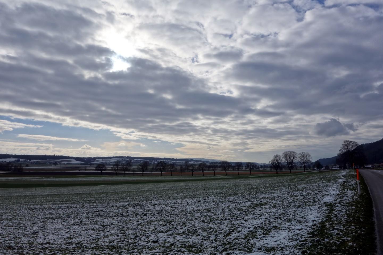 Zurück durchs Limpachtal - kalt und windig
