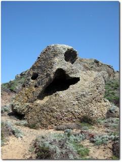 Monsterfelsen am Point Lobos