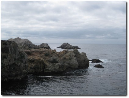 Point Lobos an einem grauen Tag