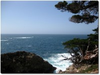 Point Lobos Meeressicht