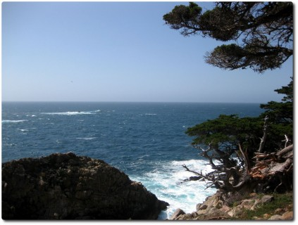 Point Lobos Meeressicht