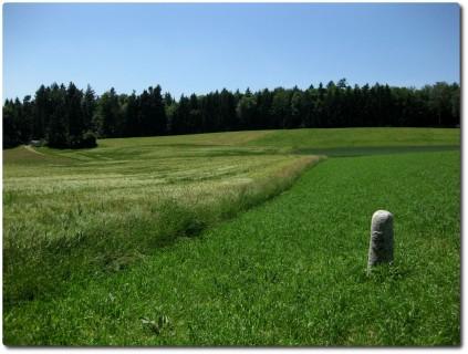 Einsamer Grenzstein im Feld
