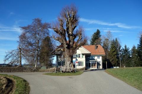 Schulhaus Lueg